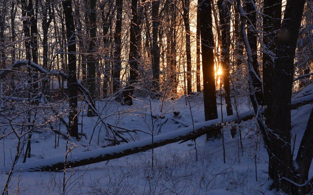 Winter at Camp Asbury